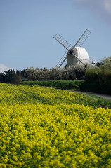 The Windmill at Great Chishill (Jayembee69) Tags: windmill greatchishill chishillwindmill spring springtime oilseedrape brassica postmill cambridgeshire cambs gold yellow uk unitedkingdom england english britain british sun sunshine field rural country countryside