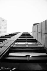 High standards (Artisticgram) Tags: boston massachusetts city citylife street streetphoto streetphotography candid canon art artistic artisitcgram photographer unexpected awesome cool photographyisfun bw blackandwhite blackwhite