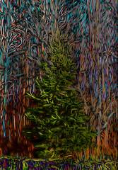 Tangle (bethrosengard) Tags: bethrosengard photomanipulation digitallyenhanced photoart digitalmagic digitalart