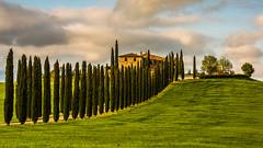On the hill (Karmen Smolnikar) Tags: italy path farm hill line tuscany toscana valdorcia cypresses castiglionedorcia