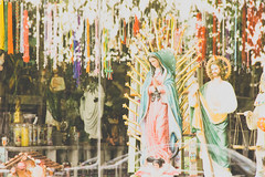 ObviousPhoto-68.jpg (Noth1ng 2 Off3r) Tags: window statue shopping religious catholic mary virgin