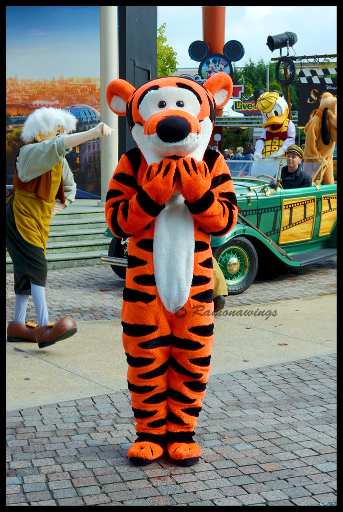 The Worlds Best Photos Of Tigger And Witch Flickr Hive Mind