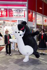 MONOKUMA -Dangan-Ronpa Promotion Event (Akihabara, Tokyo, Japan) (t-mizo) Tags: japan canon tokyo sigma   akihabara akiba lr chiyodaku lightroom  chiyoda     kigurumi sigma175028 sigma1750 sigma1750mm sigma1750f28 lr5 sigma1750mmf28 eos60d sigma1750mmoshsm sigma1750mmf28exdcos  lightroom5 sigma1750exdc  danganronpa monokuma