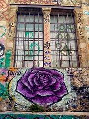 Athens street art (TheVRChris) Tags: street streetart art rose graffiti jane hellas athens greece