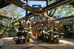 Tivoli Terrace Chapel (lefeber) Tags: california flowers trees architecture garden vines topiary doors shadows gates rustic wideangle venue bushes beams lagunabeach stainedglasswindows weddingchapel tivoliterrace