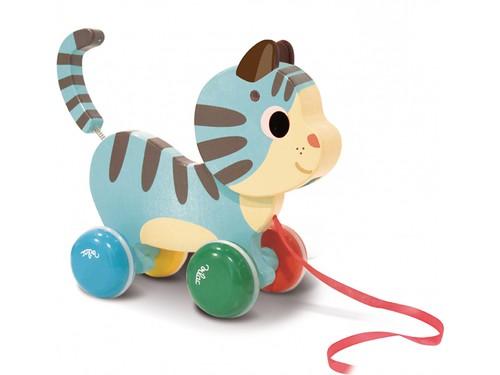 Marcel le chat à trainer