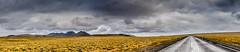Road to Þingvellir