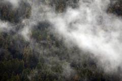 MYL_2275m (MILESI FEDERICO) Tags: wild italy panorama nature nikon italia nuvole nuvola natura piemonte nebbia autunno alpi piedmont paesaggio valsusa nital valdisusa milesi alpicozie valledisusa visitpiedmont valliolimpiche nikond7100 milesifederico