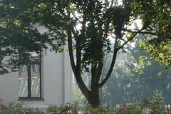 Herfst in Zwolle (Moser's Maroon) Tags: autumn herfst zwolle