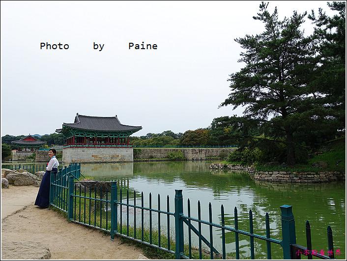 14雁鴨池 (11).JPG