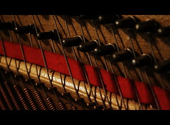 Piano 1 (explored) (mbagwt) Tags: music macromondays