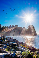 color saturation can prevent cancer II (superstarfighter) Tags: ocean county blue sea usa green beach birds 35mm washington olympicpeninsula flare pacificnorthwest fujifilm olympic washingtonstate olympicnationalpark lapush clallam olympicnp fujix100s x100s quilleuteindianreservation