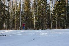 "Одинокая лыжница • <a style=""font-size:0.8em;"" href=""http://www.flickr.com/photos/107434268@N03/15447082170/"" target=""_blank"">View on Flickr</a>"