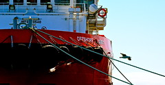 Offshore Quest (Padmacara) Tags: red chains ship gull australia tires ropes fremantle tyres shadowlight d7100