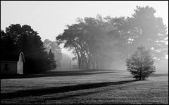 Farmland Sunrise (greenthumb_38) Tags: