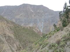 Colca Canyon-43