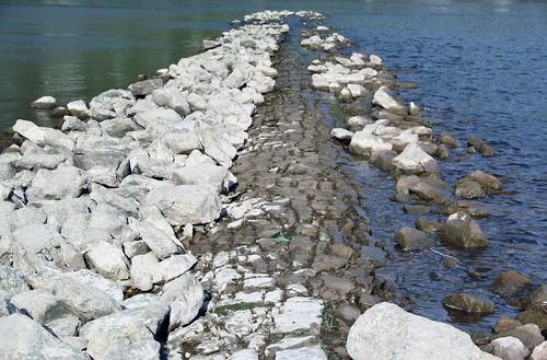 Rhinen 2014 - Dige i floden