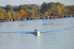 Jesen u Splavarskoj, Slavonski Brod