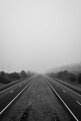 Road into the unknown (Wouter de Bruijn) Tags: road trees blackandwhite mist monochrome fog landscape shadows fujifilm xt1 fujinonxf14mmf28r