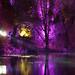 Botanics at night
