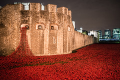 London October 2014: Tower of London (Harry_S) Tags: uk light red england london tower night 35mm blood war britain sony full frame poppy lands remembrance swept seas rx1