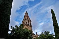 Cordoba (Espana) la mezquita (memo52foto) Tags: spain cathedral espana cordoba mezquita andalusia espagne cordova spanien spagna iberia cattedrale moschea espanya mezquitadecordoba grandemoschea penisolaiberica espanien torredellamalmuerta