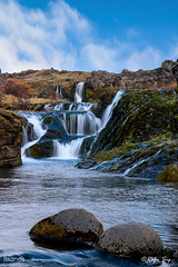 Oasis in the highlands of Iceland