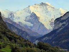 Stau auf der Autobahn bei Interlaken (HITSCHKO) Tags: schweiz switzerland suisse pass rhne bern alpen rotten svizzera wallis aare valais grimsel innertkirchen grimselpass svizra goms alpenpass gletsch haslital