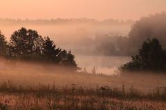 Fog By The Lake (Toni Kaarttinen) Tags: morning summer mist lake nature beautiful field misty fog sunrise suomi finland dawn countryside finnland country foggy finlandia フィンランド finlande finlândia finnország finlanda finlàndia финляндия finnishsummer finnlando فنلندا
