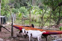 Costa-Rica-90