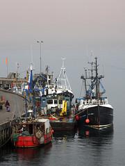 Oban Mist (goremirebob) Tags: mist scotland argyll oban fishingboats scotchmist