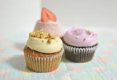 magnolia cupcakes (*tmk*) Tags: pink ny japan dessert cupcakes strawberry yum purple tea sweet bokeh chocolate pastel bakery magnolia vanilla nikkor d5100