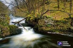 Sgwd y Bedol (Electric Lemonade Photography) Tags: tree river waterfall nationalpark fuji little salmon falls vale fallen horseshoe brecon beacons leap pontneddfechan neath ystradfellte xe1 nedd fechan afonpyrddin sgwdybedol