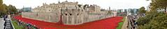 'Blood Swept Lands and Seas of Red'  - Tower of London (Neil Pulling) Tags: uk england panorama london memorial vista warmemorial toweroflondon 2014 theroyalbritishlegion towerpoppies bloodsweptlandsandseasofred poppiesinthemoat