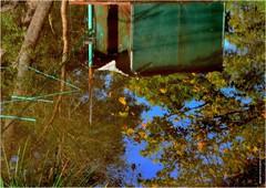 LW 285 (cadayf) Tags: wood reflection fall automne landscape 33 reflet paysage bois carrelet fishingcabin hautegironde