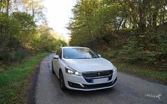 Peugeot 508 - 2014