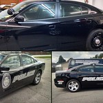 "Colona Police Car Vehicle Graphics Before & After <a style=""margin-left:10px; font-size:0.8em;"" href=""http://www.flickr.com/photos/99185451@N05/15684336792/"" target=""_blank"">@flickr</a>"