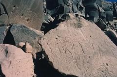 Gonoa (ursulazrich) Tags: rockart sahara tschad ciad tchad chad tibesti ennedi petroglyphs gravuren paintings cattle rhinoceros bardai fauna nashorn ignimbrit