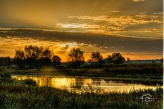 RST_Zaterdag 1 nov met Ronald_141101-13 (Robert Stienstra Photography) Tags: sunrise rhine skyporn goldensunrise