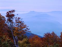 Autum (ten-su) Tags: morning blue orange mountain color film landscape leaf autum velvia fujifilm reb pentax67 55110mm