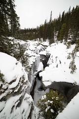 2017-SLP-002-035 (Si Longworth (Army Photographer)) Tags: jaspernationalpark 5d mk4 saskatchewanrivercrossing alberta canada ca sunwapta falls winter snow ice landscapes winterscapes