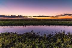 sunset after the rain (andrew.walker28) Tags: jondaryan queensland australia sunset evening landscape darling downs color colour orange yellow mauve