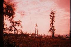 F1030015_lr (chi.ilpleut) Tags: kinmen taiwan island quemoy 2017 chinesenewyear lunar film expiredfilm kodakelitechrome100 iso100 crossprocessing 135mm 35mm analogue ilovefilms kodakfilm 底片 過期底片 柯達 記憶 蹤跡 金門鎏金之島kinmen 台灣 海島 島嶼 外島 回憶 走春 大晴天拍照天 晃晃 隨拍 我不在,就在去海邊的路上 海景 outing 冬陽 暖暖 暖陽 思念 漫步
