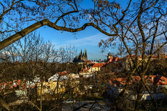 view of the Hradcany and Prague Castle (Stanislav Zakurdaev) Tags: charlesbridge czechrepublic czechculture europe hradcany prague praguecastle stanislavzakurdaev staremesto oldtown photostas