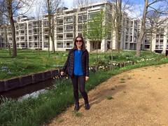 Cripps in bloom (Bex.Walton) Tags: cambridge universityofcambridge university stjohnscollege cripps flowers spring thebacks