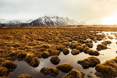 Iceland 2017- Close to Höfn (cesbai1) Tags: is islande iceland islanda islandia höfn east coast south sunrise morning landscape paysage matin lever de soleil austurland
