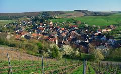 kirschroth (joachim.d.) Tags: kirschroth rhinelandpalatinate rheinland europa europe weinberg riesling nahewein wein häuser dorf village dächer 55566