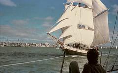 The Breeze, 1983 (muzza_buck) Tags: brigantine sailingship breeze waitemataharbour auckland newzealand sailing rangefinder 35mm film scan negative epson v700 yashicamodel35 vintagecamera