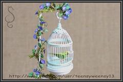 BUDGIEYG_Copy1 (Teensyweensybaby) Tags: budgie parakeet bird animal pet dollhouse ooak miniature flocked polymer clay hand made artist crafted mixed media art fibers feather