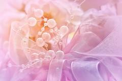 Ribbons and pearls (Mazzlo) Tags: ribbon macro macromonday clothtextiles nikon d5500 pastel soft dreamy romantic pretty feminine